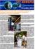 ЗТР-Информ: III квартал 2013